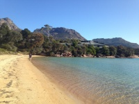 Resized 1024 Freycinet Lodge.jpg