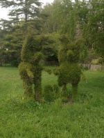 Resized 1024 Railton topiary.jpg